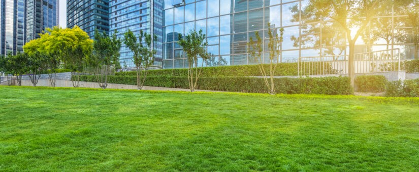 4 Hottest Trends in Green Commercial Construction